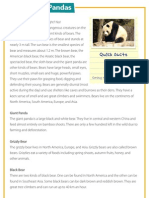 Bears and Pandas - Reading comprehension for children