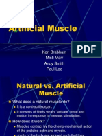 Artificial Muscle Presentation