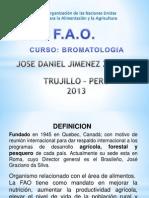 FAO Exposicion