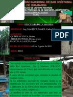 Secciones de La Madera