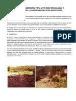 Proyecto Ambiental Caranavi II