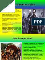 Agrupamentos Sociais (Pérsio dos Santos)