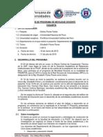 Informe Pasantia Pucp Dff