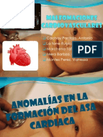 Malfomaciones Cardiovasculares