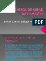 Control de Mitad de Trimestre