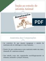 Introdução ao estudo de Anatomia Animal (1)