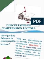 DIFICULTAD COMPRENSION LECTORA