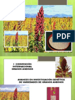 1. Arturo Vásquez - Avances en investigación genética de variedades de Granos Andinos