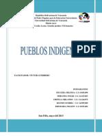 TRABAJO DE PUEBLOS INDIGENAS.docx