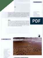 Enfoque Socioformativo Complejo_parte2