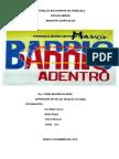 DIAGNÓSTICO DE SALUD-CMP EL PALMO(version 2013)