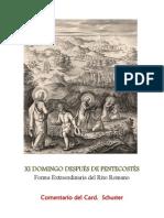 XI DOMINGO DESPUÉS DE PENTECOSTÉS