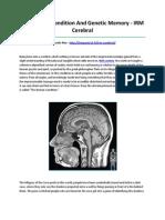 IRM Cerebral