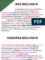 92OXIDAREA BIOLOGICĂ