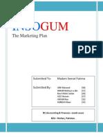 InsoGum Marketing Plan