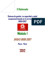 Modulo_I_OHSAS_18001_2007