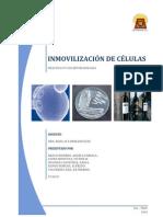 32302574 Inmovilizacion de Celulas Nnn