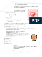 A Para to Cardiovascular