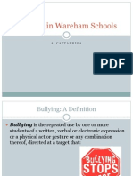 bullying amycattabriga