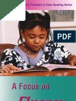 A Focus on Fluency