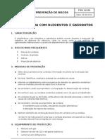 FSS12-02_Interferencia Com Oleodutos e Gasodutos