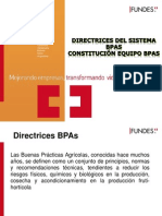 4.1.1 Directrices BPAs
