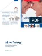 Livro Energia Magnetica En