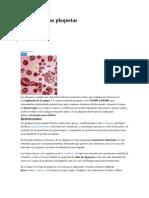 Cómo subir las plaquetas
