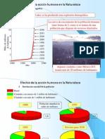 Impactos en El Medio Ambiente