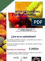 98885857 Carbohidratos Final