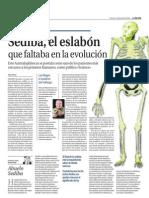 Australopithecus Sediba_La Razon20130412