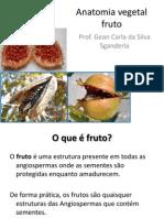 Anatomia Vegetal Fruto