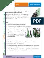 Factsheet5 - Pamri Poka