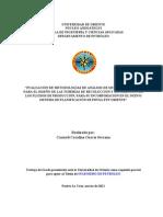 28-TESIS.IP011.G30