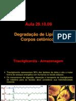 degradacao_lipideos