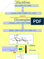 _7 Gliconeogenese