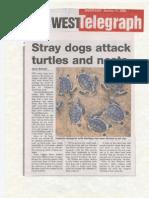The Northwest Telegraph