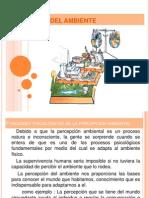 PERCEPCIÓN DEL AMBIENTE 2