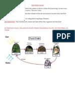 The Food Chain (5)