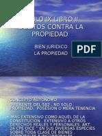 acceso directo a titulo ix libro ii  delitos contra la propiedad (hurto)