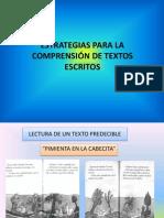 ESTRATEGIAS PARA LA COMPRENSIÓN DE TEXTOS ESCRITOS