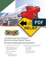 Brochure 3600 Large BiDirect RV_R1.pdf