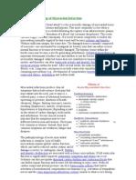 Pathophysiology of Myocardial Infarction Cvphysio.com
