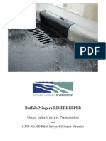 Buffalo Niagara RIVERKEEPER Bogdan Green Infrastructure