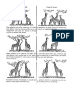 Seleccion Natural y Evolucion
