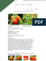 De Colgar - Solanum Lycopersicum L