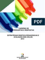 Estratégias Didático Pedagógicas - Avaliação nos Ciclos - SEEDF