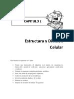 Estructura y Division Celular