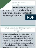 Organizational Behaviour ( OB)