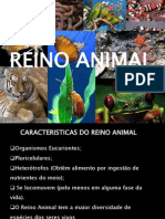 reinoanimal1poriferos-120911205216-phpapp01